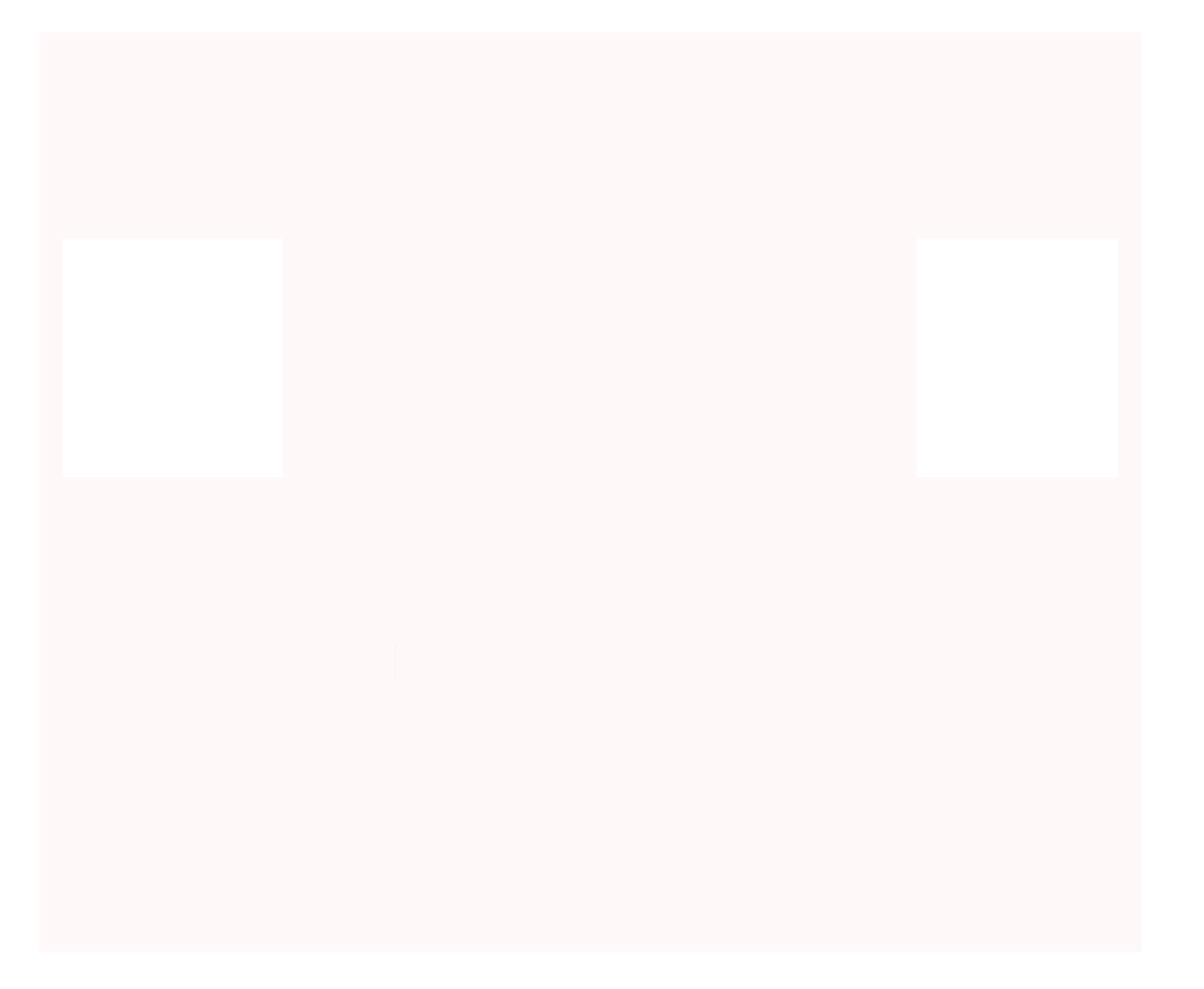 Fuga Dizayn